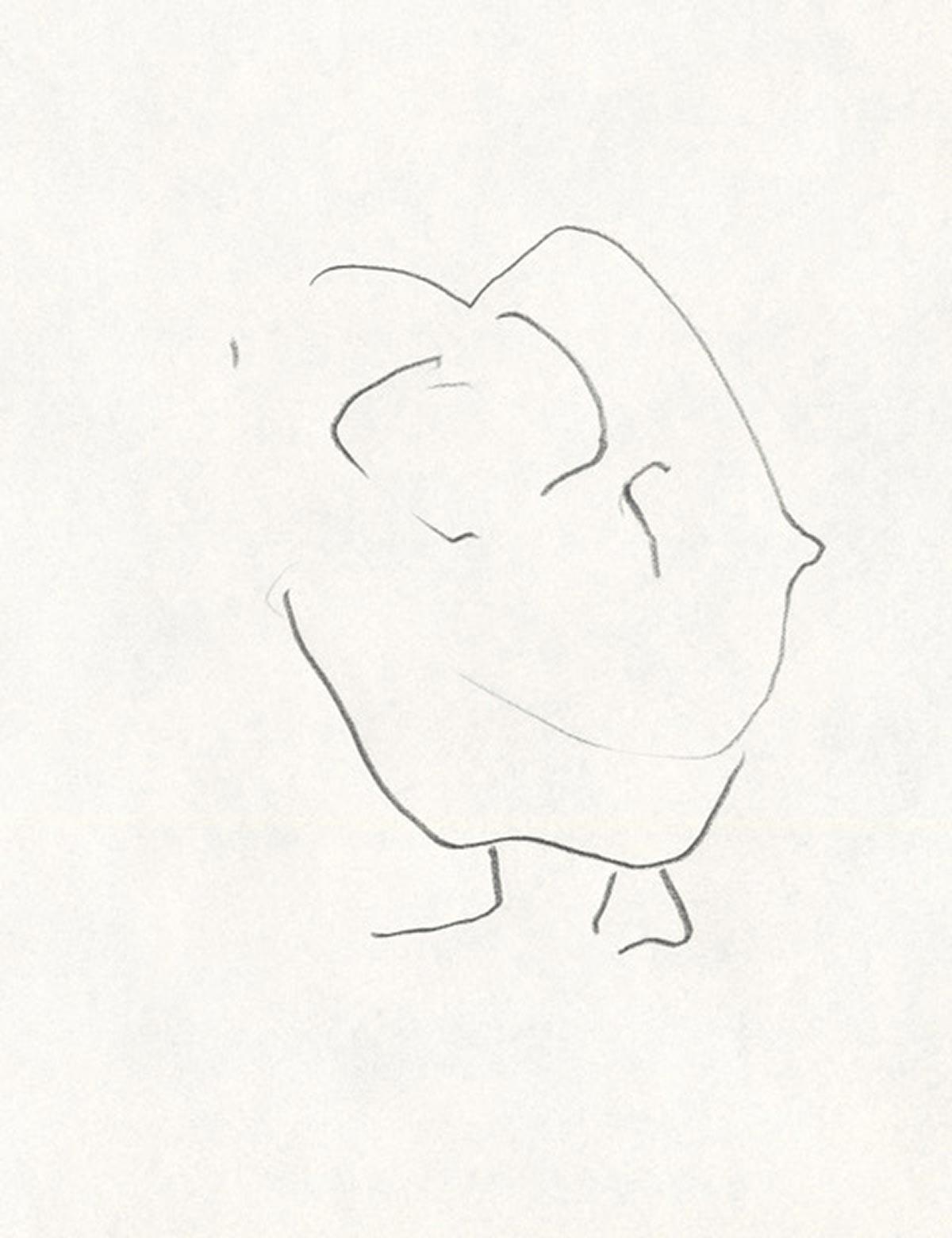 Maurice crayon
